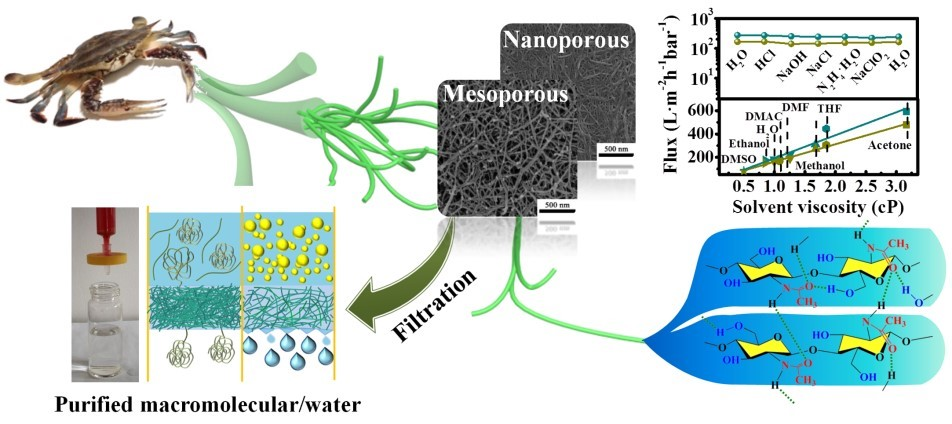 Separation of Caustic Nano-Emulsions and Macromolecular Conformations with Nanofibrous Membranes of Marine Chitin. Z Wang, J Xu, M Li, C Su, X Wu, Y Zhang, J You, C Li, ACS Appl. Mater. Interfaces  2019, 11, 8576−8583
