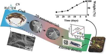 Crab Chitin‐Based 2D Soft Nanomaterials for Fully Biobased Electric Devices. You, J., Li, M., Ding, B., Wu, X., & Li, C. (2017). Advanced Materials, 29(19), 1606895.