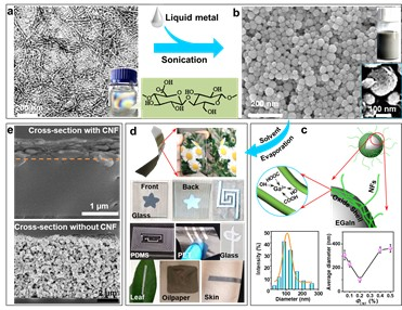 Evaporation-induced sintering of liquid metal droplets with biological nanofibrils for flexible conductivity and responsive actuation X Li, M Li, J Xu, J You, Z Yang, C Li, Nature Communications, 2019, https://doi.org/10.1038/s41467-019-11466-5