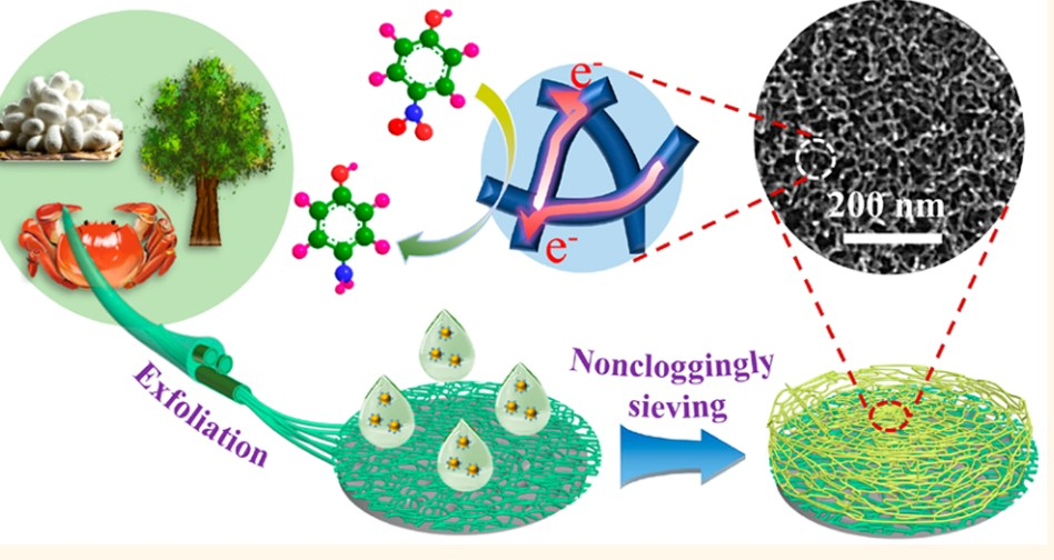 Noncloggingly Sieving Sub‑6 nm Nanoparticles of Noble Metals into Conductive Mesoporous Foams with Biological Nanofibrils. ACS Nano  Z. Wang, J. Xu, P. Wang, Y. Zhang, J. You,* and C. Li*. DOI: 10.1021/acsnano.9b07923