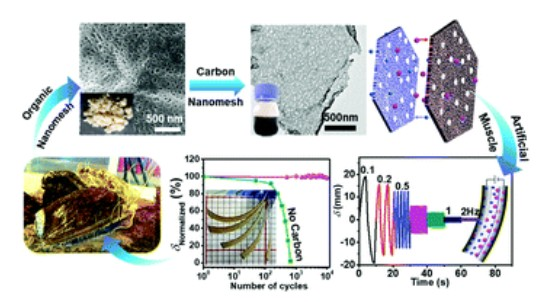 Nacre-based carbon nanomeshes for a soft ionic actuator with large and rapid deformation. Journal of Materials Chemistry C. X. Han; M. Kong; M. Li;* X. Li; W. Yang; C. Li*DOI: 10.1039/c9tc06186j